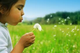 Child's Wish